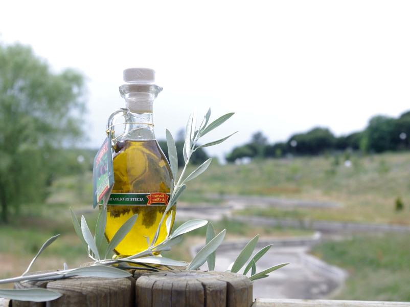 производство оливкового масла помогает природе