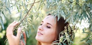 оливковое масло - с заботой о волосах (часть вторая)