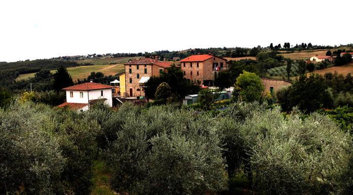 оптимизм итальянских фермеров