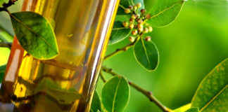 диета и оливковое масло