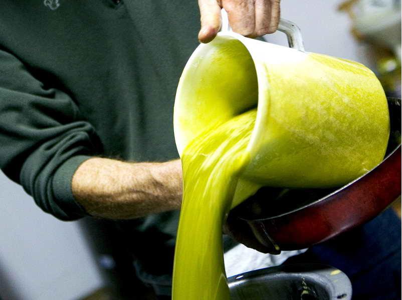 olivkovogo masla