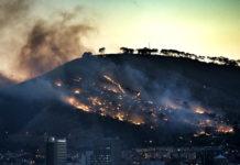 Промышленность оливкового масла и пожары