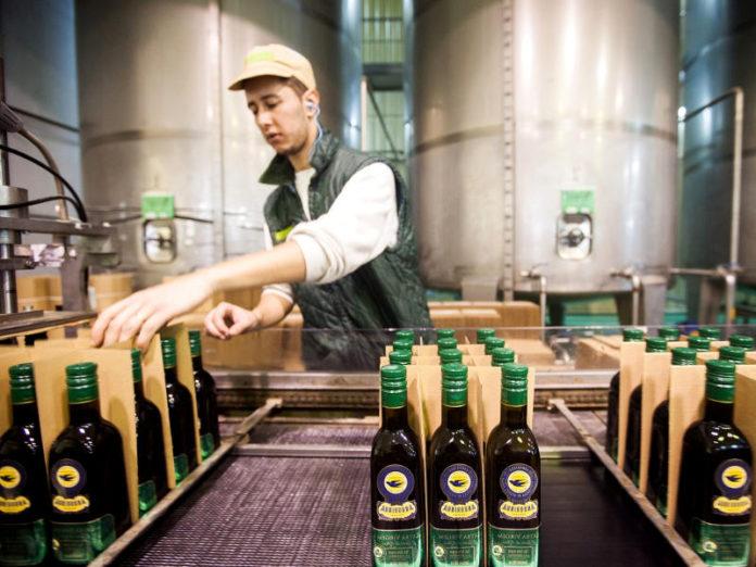 Маслины и оливковое масло Португалии