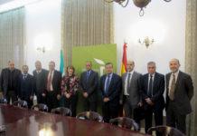 марокканский сектор оливкового масла