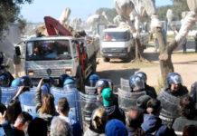 перемещение оливковых деревьев для трубопровода