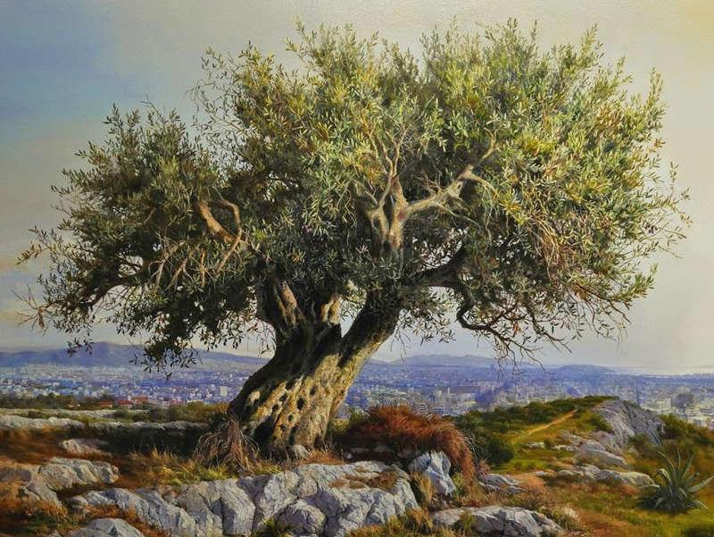 дегустация оливкового масла