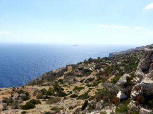 Мальтийское оливковое масло
