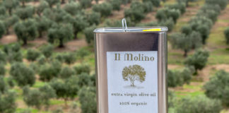 Оливковое масло из маслин без косточек