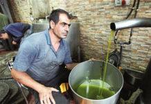 Ливийское оливковое масло