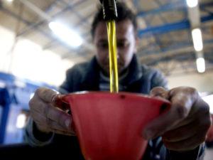 изготовление оливкового масла