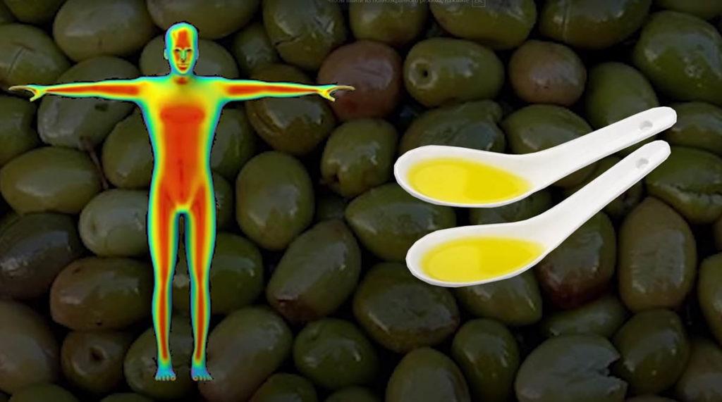 Оливковое масло поддерживает здоровье мышц