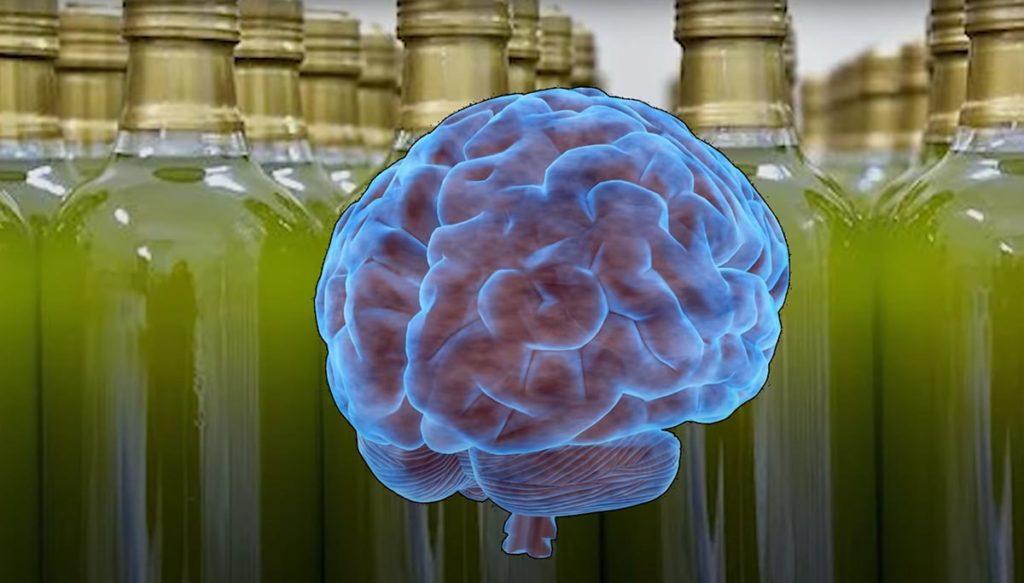 Оливковое масло благотворно влияет на мозг человека